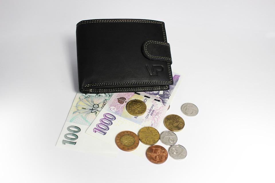 peněženka a peníze